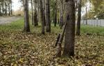 «Калашников» открыл заказ на охотничий карабин Baikal 145 Лось