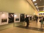 В аэропорту Шереметьево начала работу фотовыставка к 100-летию Михаила Калашникова