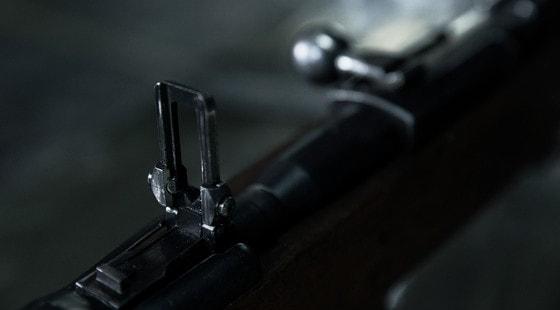 История калибра: не ставший «русским». 6,5 мм патрон Федорова