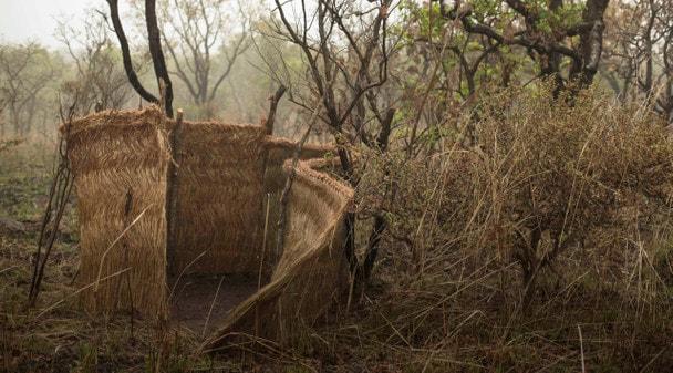 Основной Инстинкт: Охота в Камеруне. Часть 6
