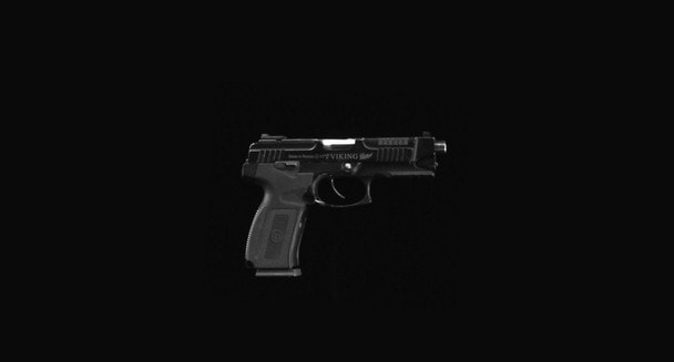 MP-446C Викинг: ТТХ