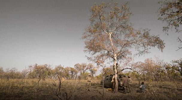 Основной Инстинкт: Охота в Камеруне. Часть 14