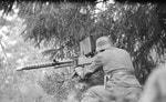 Отчет стрелкового полигона: противотанковое ружьё Lahti L-39