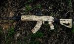 Автомат или штурмовая винтовка?